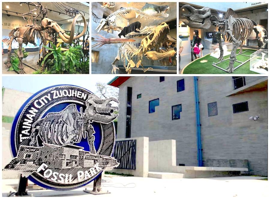 臺南左鎮化石園區 台南親子景點-以恐龍化石為主題的博物館